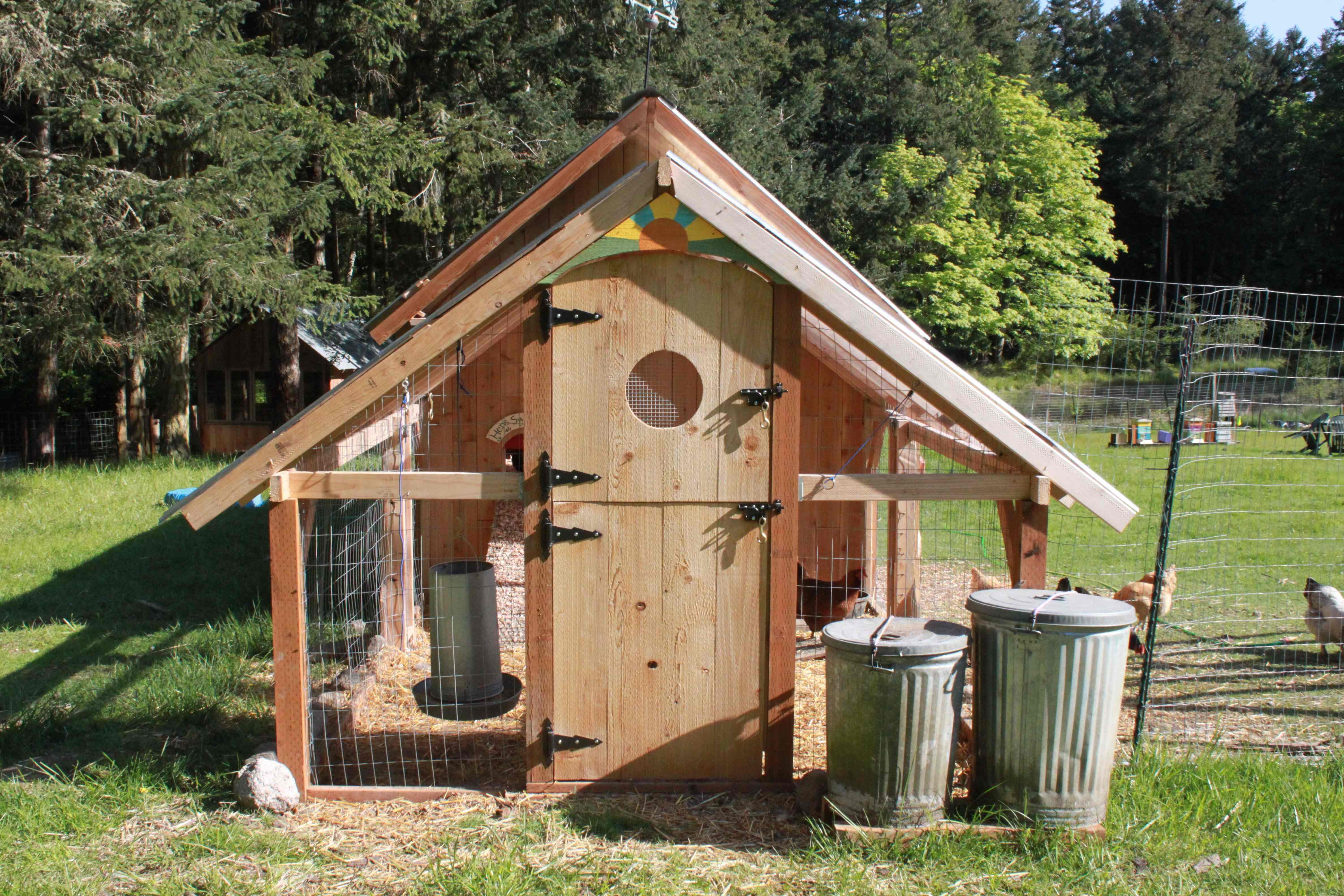 Diy Chick Coop Learn Chicken Coop Ideas Pictures